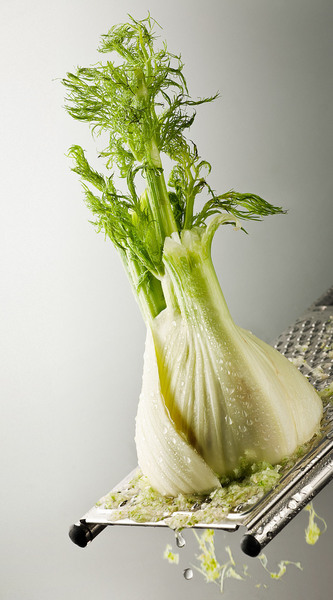 Thumb_big_fenchel_ok_img_2358